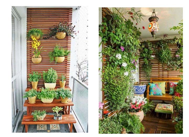 garden next door